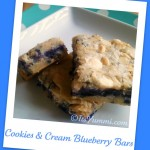 Cookies & Cream Blueberry - Polaroid