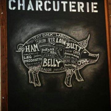 anatomy of a pig