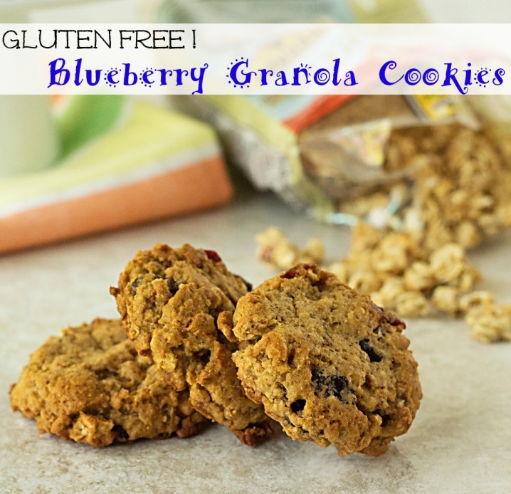 titled photo (and shown): Gluten Free Blueberry Granola Cookies