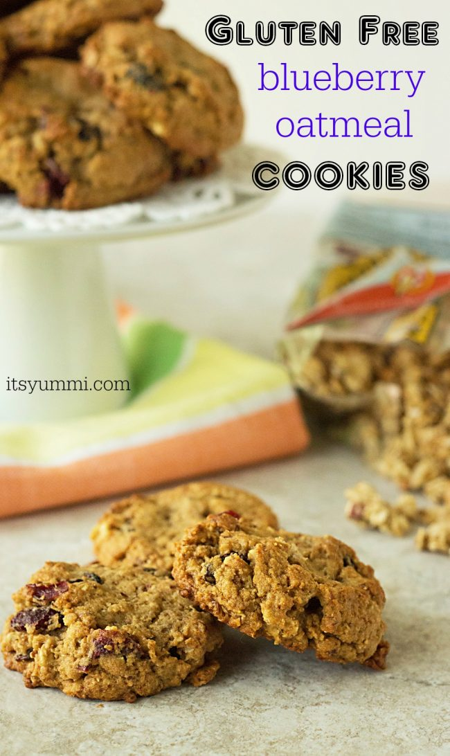 gluten free granola breakfast cookies with dried blueberries