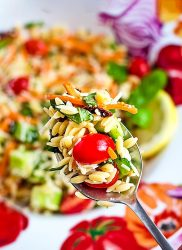 pasta salad with garden veggies on a spoon