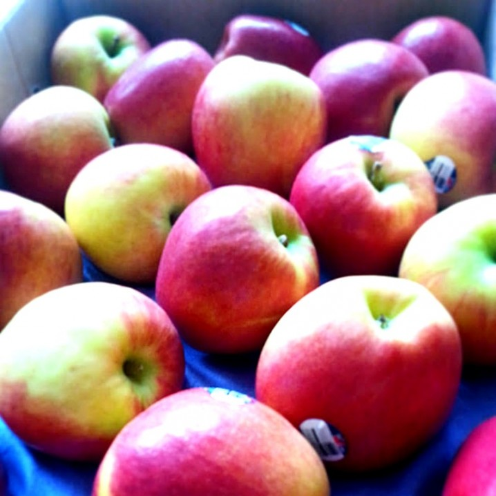 Jazz Apples from New Zealand