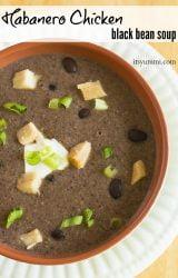 bowl of Habanero Chicken Black Bean Soup