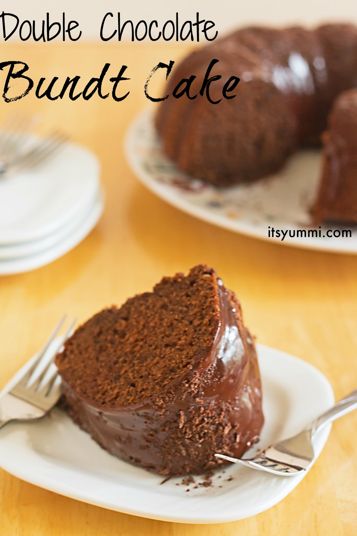 Double Chocolate Bundt Cake from ItsYummi.com