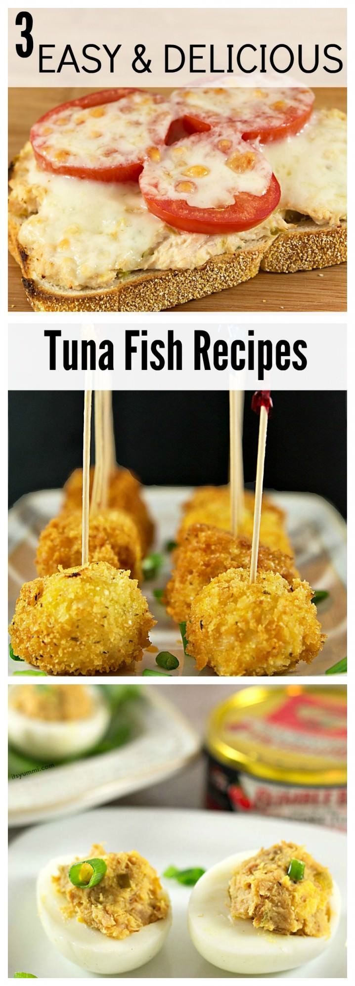 3 Easy Tuna Recipes - 2 appetizers and a 1 healthy paleo lunch recipe!