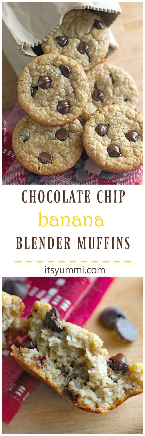 Gluten Free Chocolate Chip Banana Blender Muffins - I love these quick bread muffins! The batter is made in a blender, so there's less mess, and they bake up in about 15 minutes. - Recipe on itsyummi.com