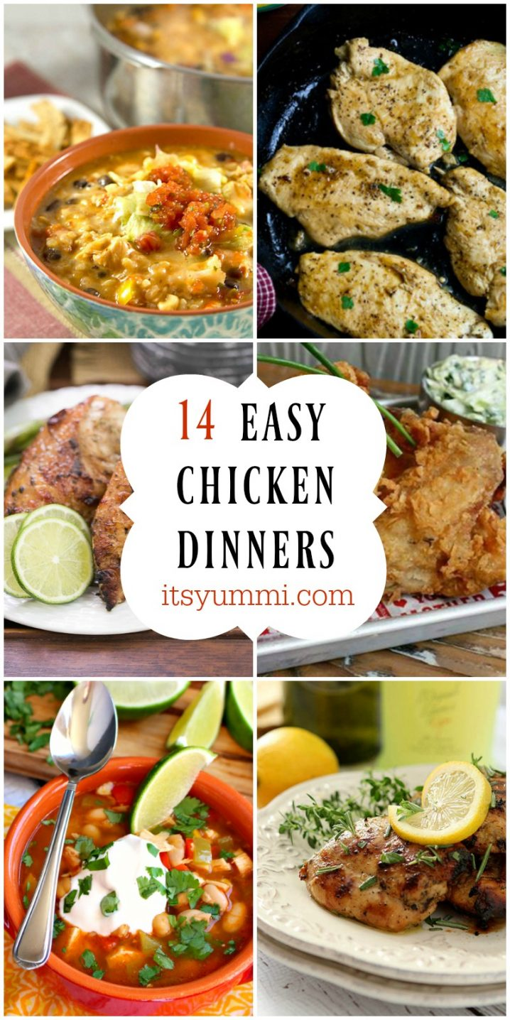 14 Easy Chicken Dinners to help you celebrate September's National Chicken Month! Get the recipes on itsyummi.com