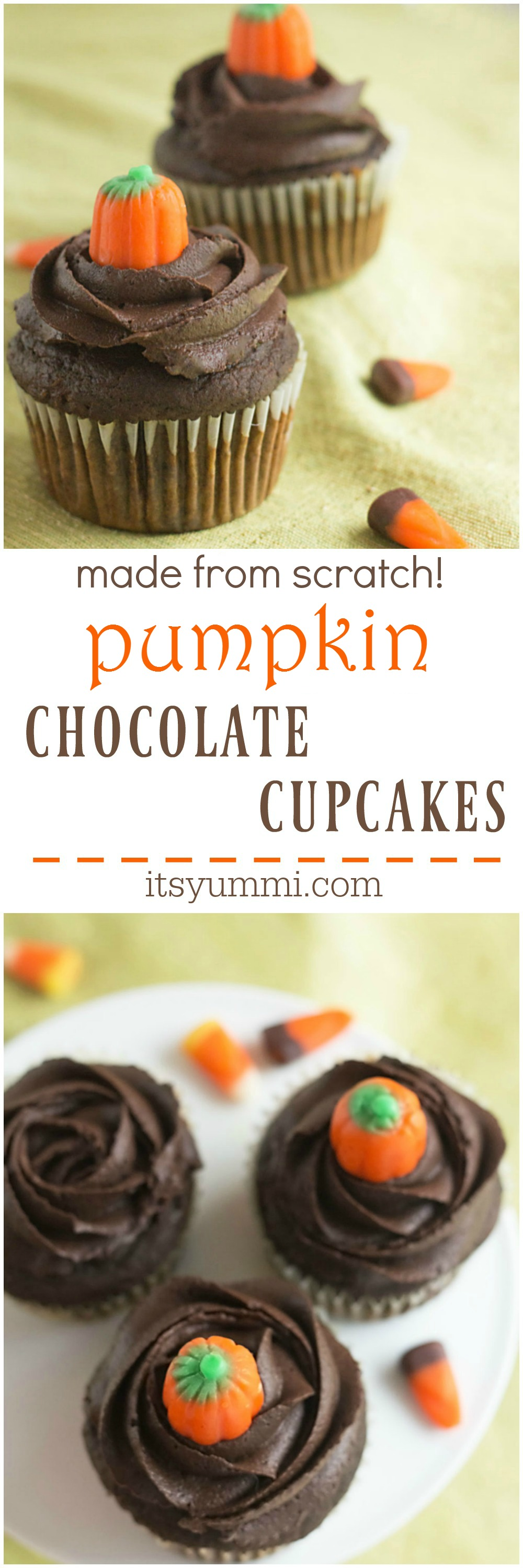 Pumpkin Chocolate Cupcakes | Its Yummi