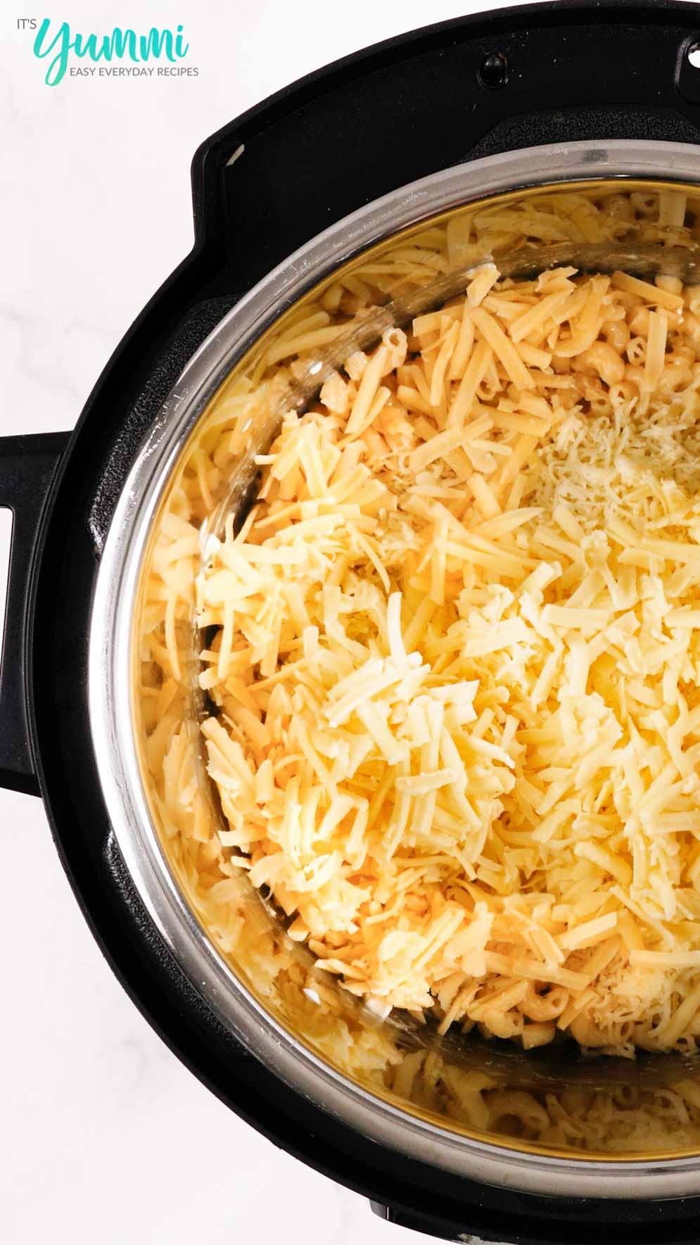 IP Mac and Cheese