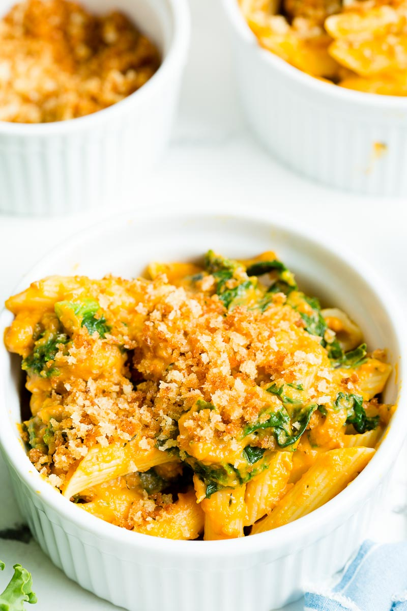 A close up of creamy turkey pumpkin pasta topped with browned breadcrumbs in a white bowl.